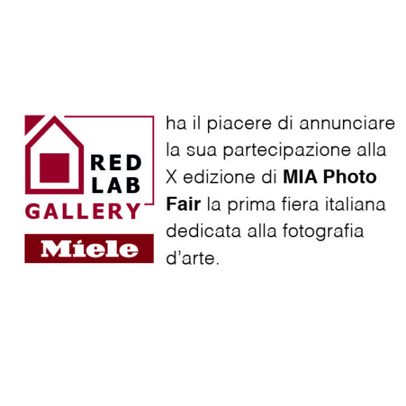 Red Lab Gallery
